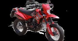 Puzey STX 200 MTD