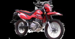 Puzey STX 250 Trail