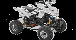Gomoto ATV Quad 250cc