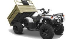 Big Boy Monster 250 ATV
