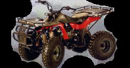 Kazuma Dingo 150